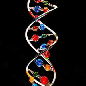 genes - 300x300 - Verified