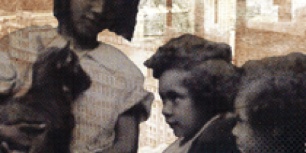 Newham Family Tree – Ethnicity