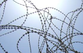 photo of barbed wire